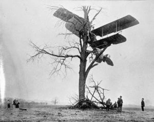 old style airplane stuck up a tree